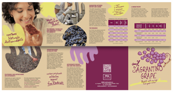 SAGRANTINO – The 'Healthy Heart' Grape!