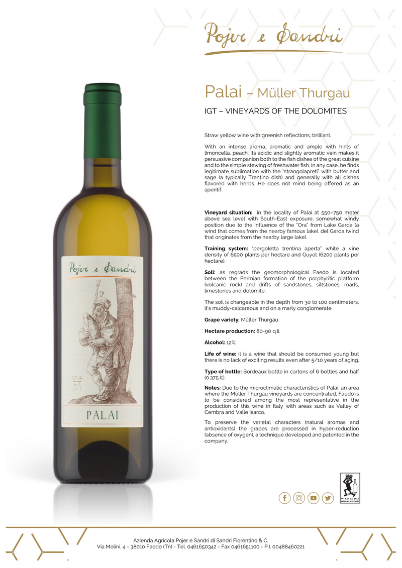 PALAI 2018 [Pojer & Sandri] 75cl - Once Upon A Vine Singapore