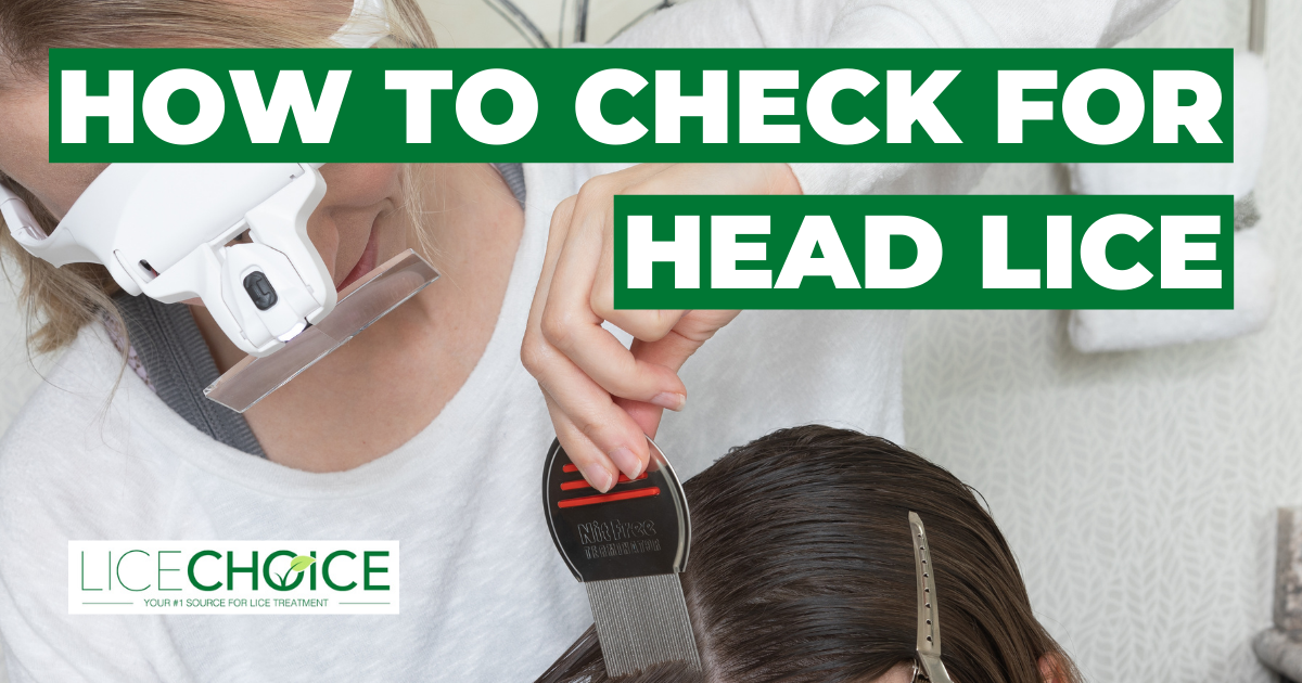 How To Check for Head Lice: A Complete Guide to Lice Detection