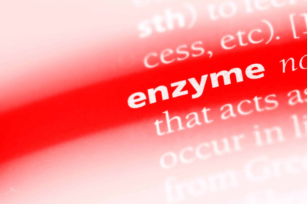 Enzyme treatment for head lice
