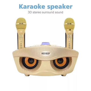 SDRD SD 306 Portable Family Karaoke System Two Wireless Microphones With 20w Stereo Bluetooth Speaker Condenser Karaoke Microphone - TUZZUT Qatar Online Store