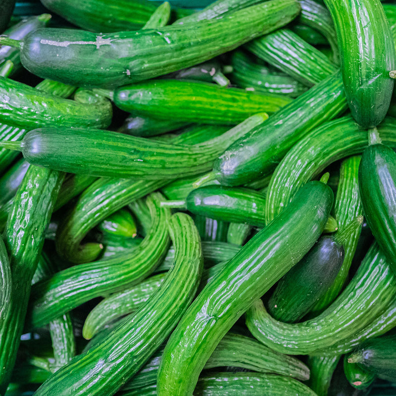 A bunch of curvy, ugly, cucumbers