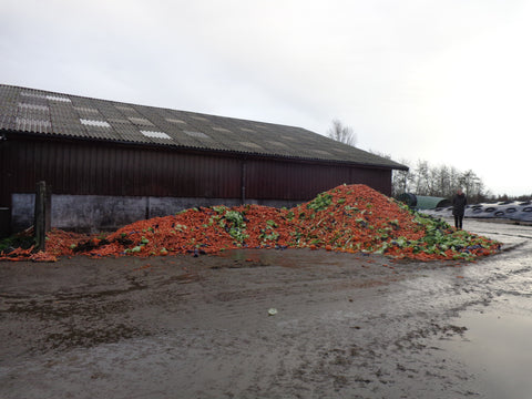 A big pile of wasted vegetables at a farm