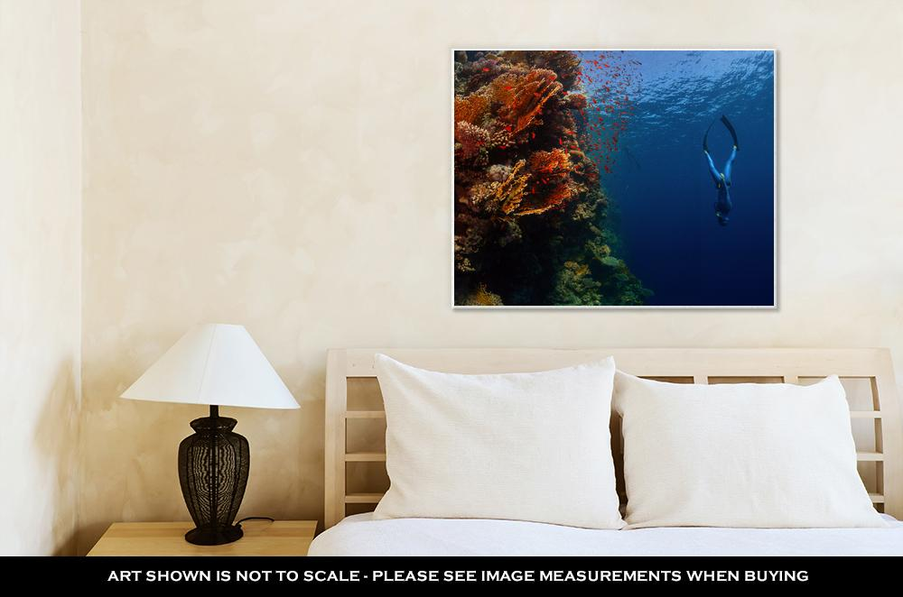 Diving in The Red Sea - Canvas Wall Art