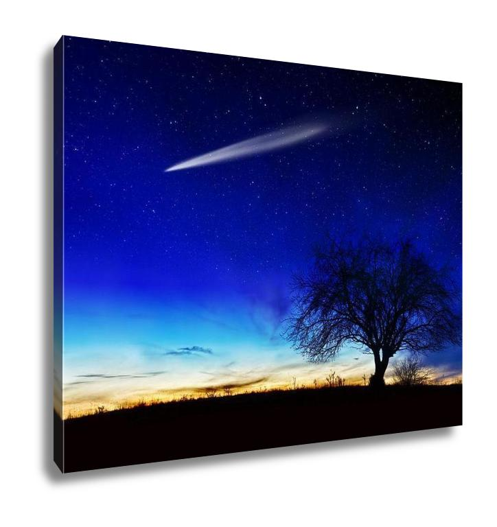 Under the Stars - Canvas Wall Art
