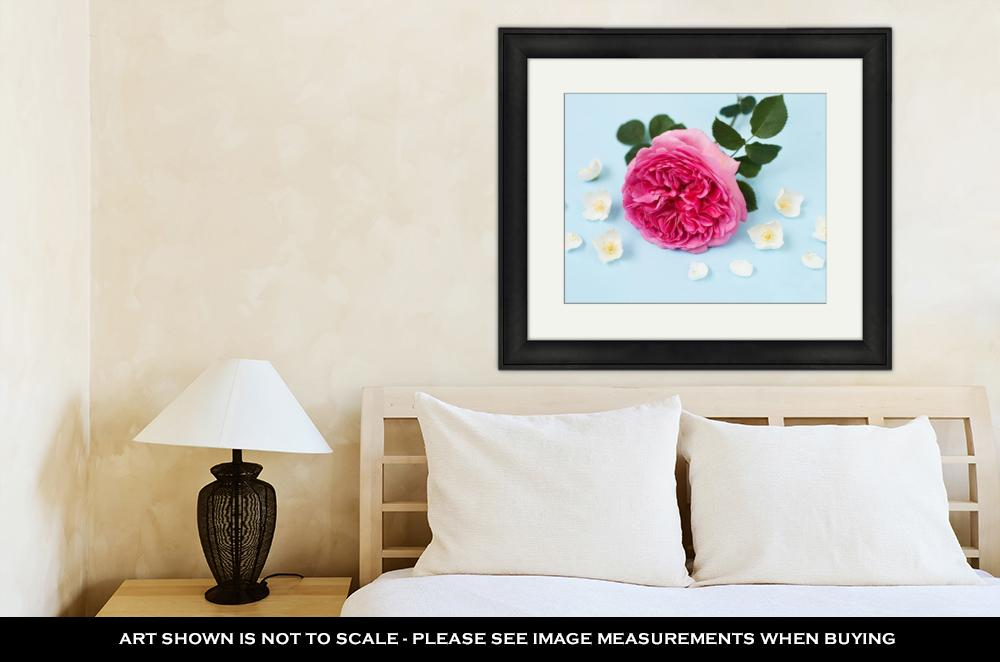 Princess Alexanda's Jasmine Flowers - Framed Wall Art