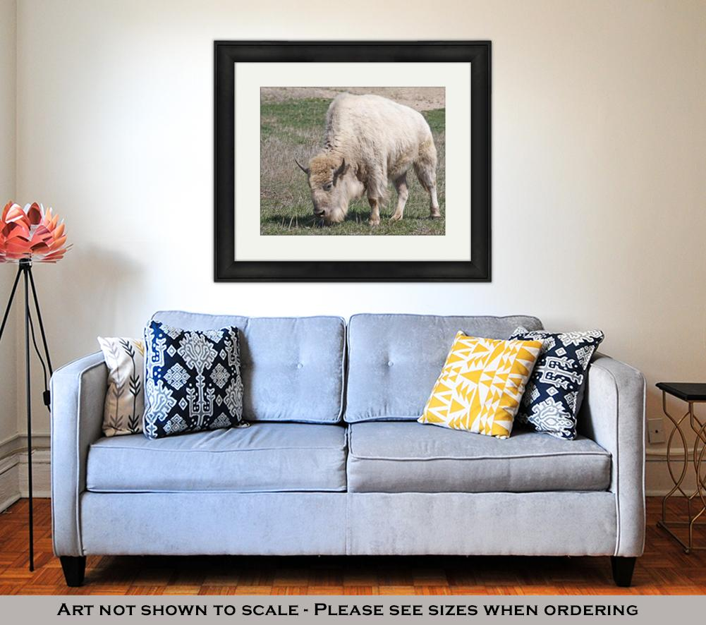 White American Bison - Framed Wall Art