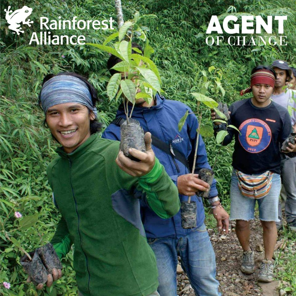 Volunteers working for Rainforest Alliance charity in the Amazon