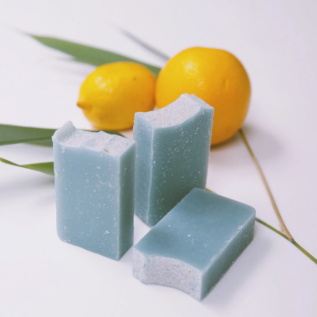 Sea Spray & Citrus Exfoliating Soap Body Bar