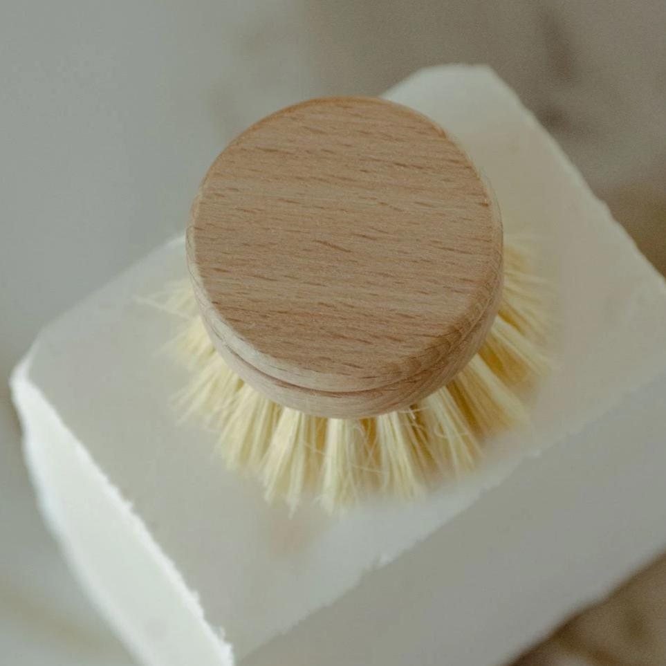 White Teakwood & Agave Fibre Dish Brush (with Replaceable Head)