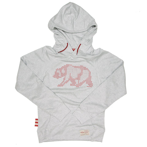 Adult Pixel Bear Leisure Hoodie by SDS
