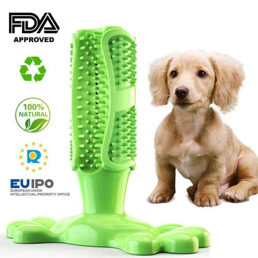 Toothbrush Chew Toy - Pawsky Pets