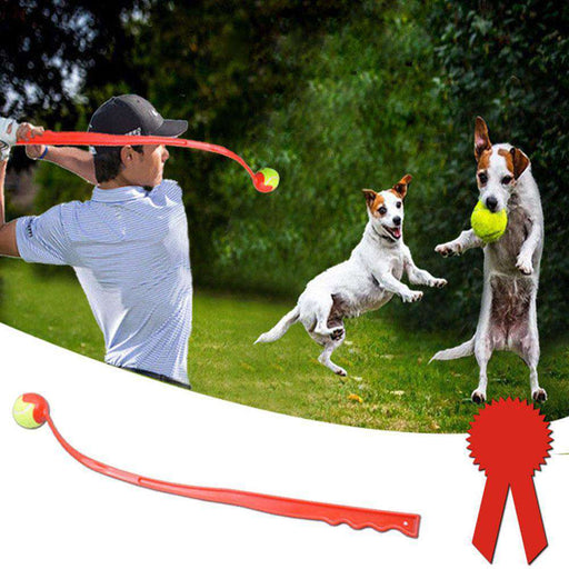 Ball Launcher - Pawsky Pets