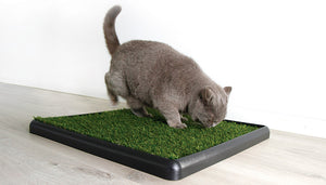 Easy to use cat toilet for lifestyle village living