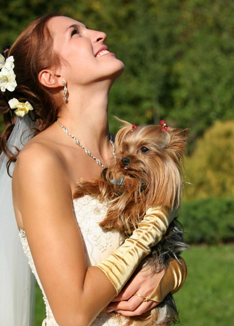 Including pets at your wedding tips