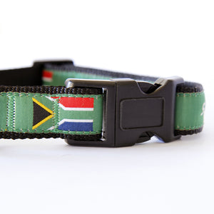 South Africa Dog Collar