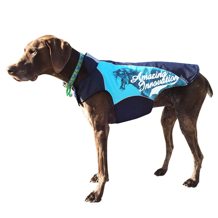 Touch Dog Coat Sky Blue