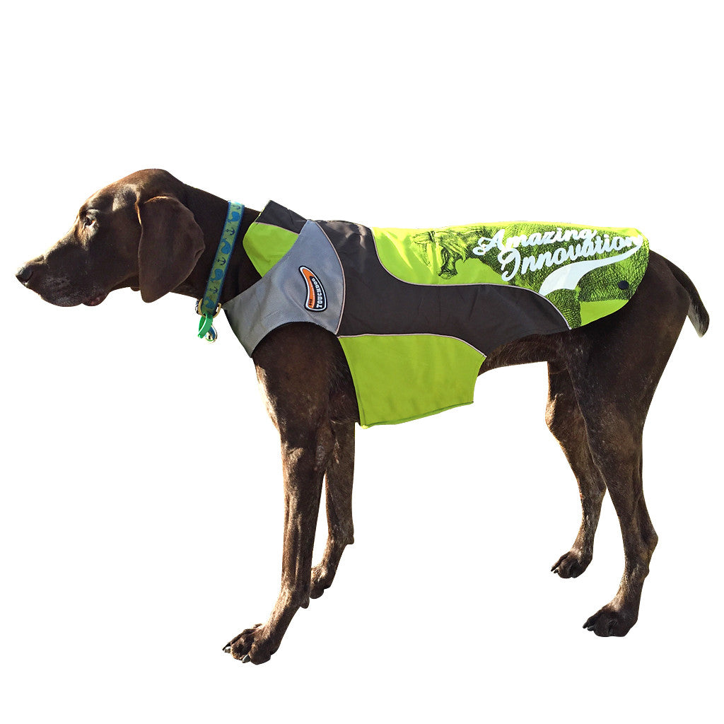 Touch Dog Coat Lime