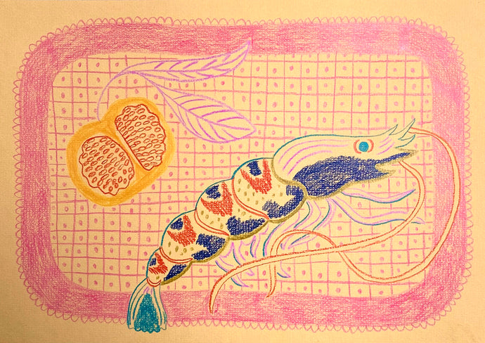 Tiger Prawn Study Peach | Camilla Perkins | Coloured Pencils on Paper | Partnership Editions