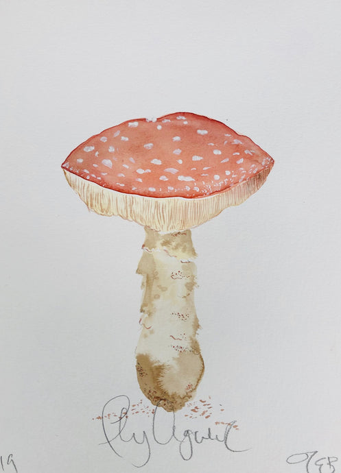 Fly Agaricus | Julianna Byrne | Original Artwork | Goucache and Ink | Partnership Editions