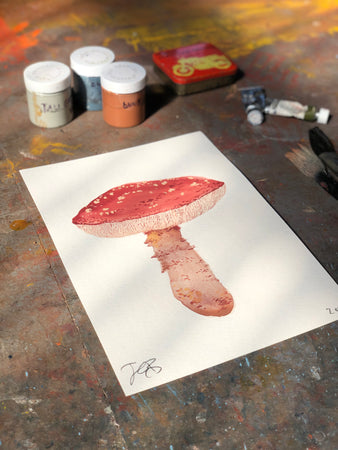 Fungo Agaric | Julianna Byrne | Original Artwork