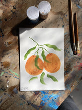 Load image into Gallery viewer, Kitsune Clementines