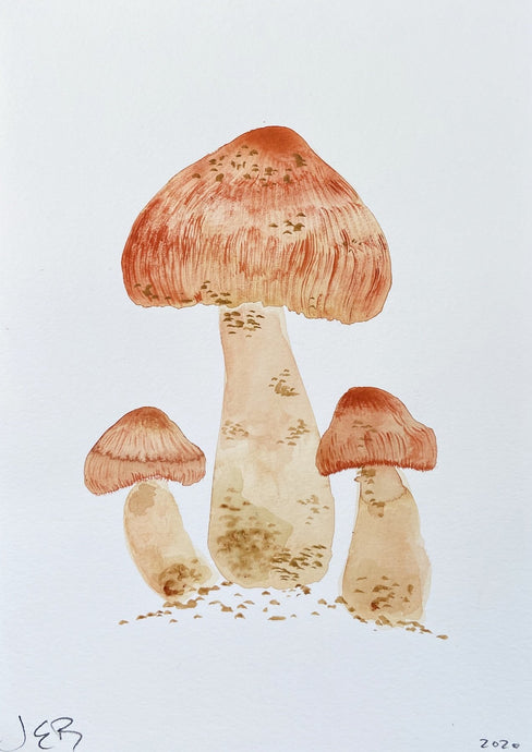 Kitsune Fungi | Julianna Byrne | Original Artwork | Partnership Editions
