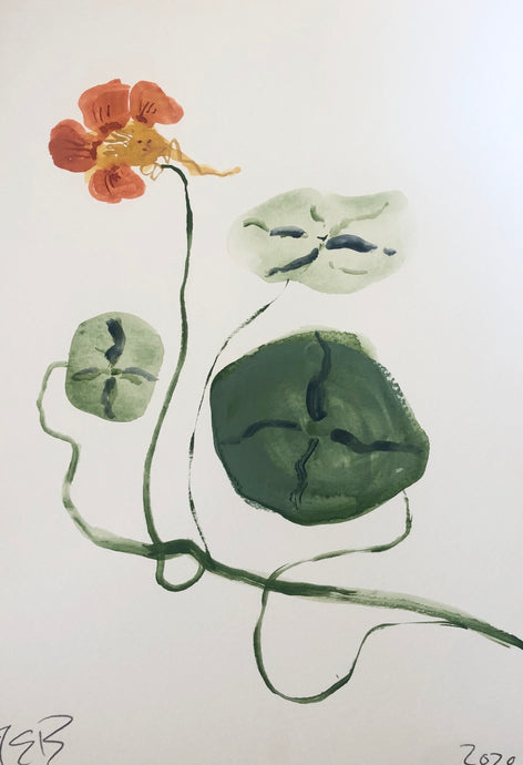 Nasturtium | Julianna Byrne | Original Artwork