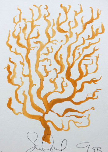 Sea Coral XLI | Julianna Byrne | Original Artwork | Gouache on Paper | Partnership Editions