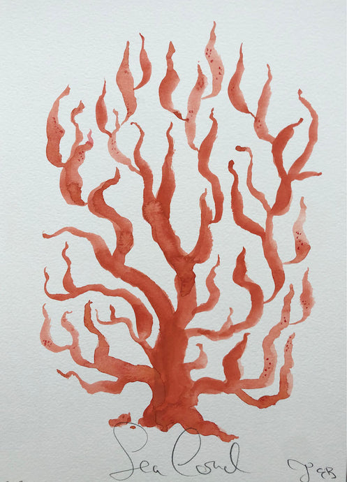 Sea Coral XLIII | Julianna Byrne | Original Artwork | Gouache on Paper | Partnership Editions