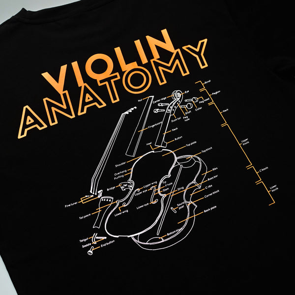 Violin Anatomy