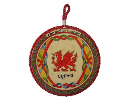 Welsh Dragon Rope Plaque