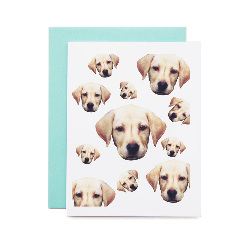 Dogs Everywhere Card