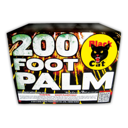 200 Foot Palm