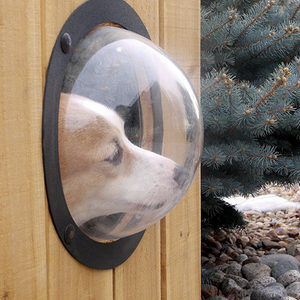 Fence Window for Pets-Pet Appliance-ggfeelings.com-