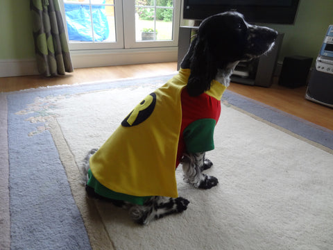 Fancy Dress Dog Costume/Coat Robin (Batman)