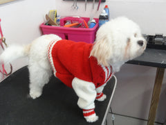 "Knitted Warm Dog Coat ""Preppy Cardigan"""
