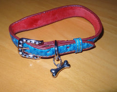 Dog Collar Blue Bone Pattern with Sparkle Buckle