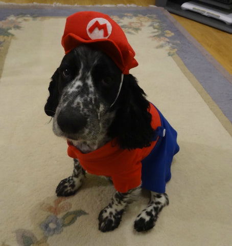 Fancy Dress Dog Costume/Coat Super Mario