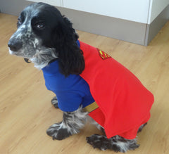 Fancy Dress Dog Costume/Coat Superdog Superman