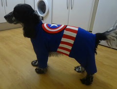 Fancy Dress Dog Costume/Coat Captain America