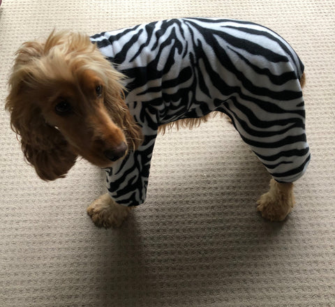 Dog Costume Coat Pyjamas - Onesie Zebra