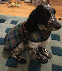 Dog Fleece Coat Double Layered for Added Warmth