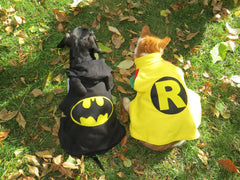 Fancy Dress Dog Costume/Coat Batdog (Batman)