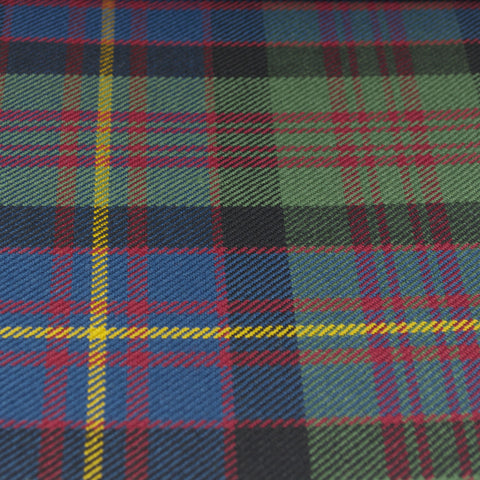 Tartan Fabric - Cameron of Erracht - Muted