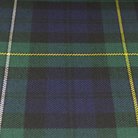 Tartan Fabric - Campbell of Louden