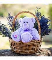 Accessories - Mikey The Lavender Bear | Young Spirit Australia
