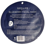 Blueberry Facial Mask - Moisturize & Soften