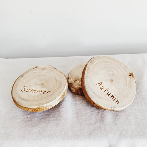 Mini Wooden Slab Set- Seasons