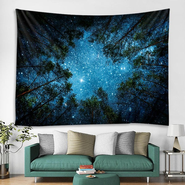 Clear Sky in the Forest Tapestry